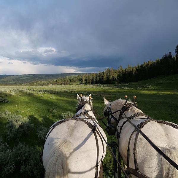 Montana Dude Ranch Activities